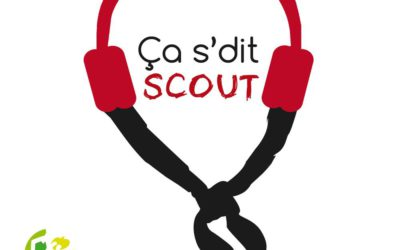 logo-casditscout