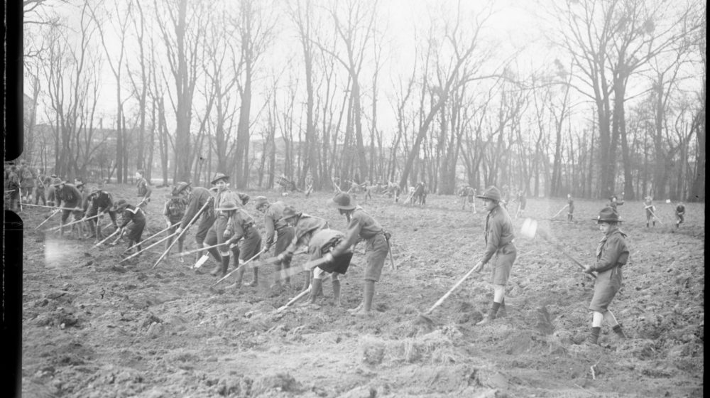 Les Éclaireurs défrichent et cultivent un terrain en 1917, à Puteaux - Bibliothèque Nationale de France