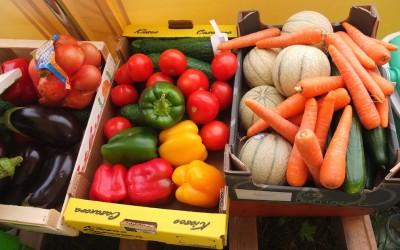 légumes en camp scout